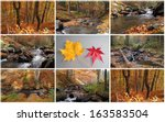 Autumn Creek And Forest Collag...