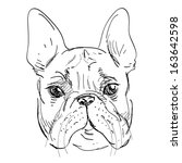 animal,art,baby,background,black,boston,brown,bulldog,canine,clip,cute,design,dog,doggy,drawing
