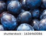 close up of fresh ripe black... | Shutterstock . vector #1636460086