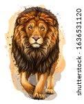 lion. artistic  color ... | Shutterstock .eps vector #1636531120