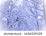 blurred view through the frozen ... | Shutterstock . vector #1636539109