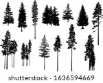 set. silhouettes of pine trees. ... | Shutterstock .eps vector #1636594669