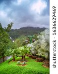 danang  vietnam   january 01...   Shutterstock . vector #1636629469