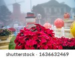 christmas composition with...   Shutterstock . vector #1636632469
