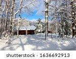 Snowy Winter Wisconsin...