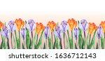 watercolour hand painted... | Shutterstock . vector #1636712143