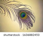 Peacock Feather On Yellow...