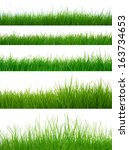 different types of green grass  | Shutterstock . vector #163734653