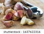 Bulbs Of Garlic On Cutting...