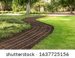 Green lawn and drip irrigation for flowers and plants - stock photo