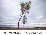 Minimalist Landscape With Two...