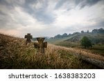 Dramatic Landscape With Two...