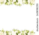 Stock photo white roses border 163858250