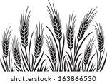 field of wheat  barley or rye... | Shutterstock .eps vector #163866530
