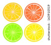 citric slices | Shutterstock . vector #163910519