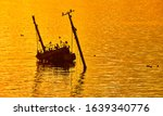 Gold Sunset With Sunken Ship...