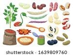 bean of food vector... | Shutterstock .eps vector #1639809760