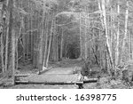 Black & white Trail - stock photo