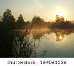 morning on a lake | Shutterstock . vector #164061236