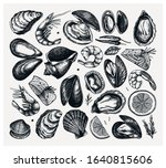 vector seafood collection. hand ... | Shutterstock .eps vector #1640815606