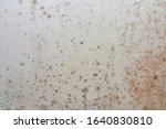 black mould and fungus on home... | Shutterstock . vector #1640830810