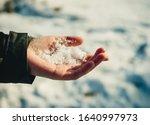 Children's Hand Holds Snow In...