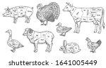 Animal Meat Cut Parts Set  ...