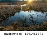 Cutler Park Reservation, Needham, MA