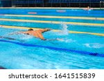 athletic man swimming in... | Shutterstock . vector #1641515839