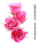 Stock photo pink rose flower bouquet isolated on white background cutout 164184680