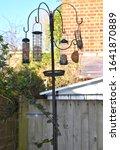 Wild Bird Feeding Station With...