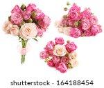 rose flower in over white | Shutterstock . vector #164188454