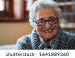 Portrait Beautiful Elderly...
