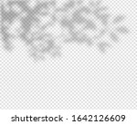 shadow overlay effect. natural... | Shutterstock .eps vector #1642126609