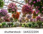 Indoor Flower Park