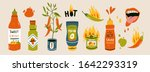 Big set of hot Chilli sauces. Red and green Hot Chili peppers. Various spicy dressings, mayo, salsa. Burning hot. Different bottles. Hand drawn colored vector illustration. All elements are isolated