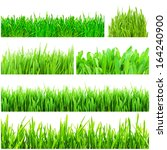 fresh green grass isolated on... | Shutterstock . vector #164240900