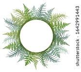 fern frond frame circle vector... | Shutterstock .eps vector #1642991443