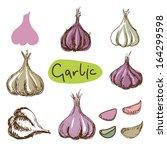 set simple sketch icons garlic... | Shutterstock . vector #164299598