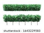 realistic garden plant fence....   Shutterstock .eps vector #1643229583