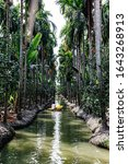 Small photo of People rowing in the watercourse in the garden. Plants, vegetables, fruits.