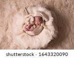 Newborn Baby Boy  10 Days Old ...