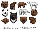 bear vector sketch with heads... | Shutterstock .eps vector #1643340169