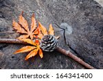 Maple Leaf With Pine Cone On...