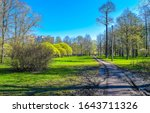 Small photo of Spring rural road landscape. Rural road after rain in springtime. Spring rural road