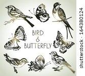 bird and butterfly set  hand... | Shutterstock .eps vector #164380124