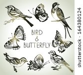 Bird And Butterfly Set  Hand...
