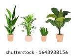 pot plant set. large natural... | Shutterstock .eps vector #1643938156