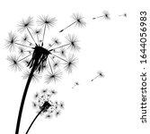 Dandelion Flies Off Fluff...