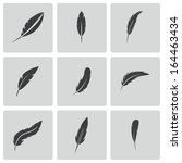 vector black feather icons set | Shutterstock .eps vector #164463434